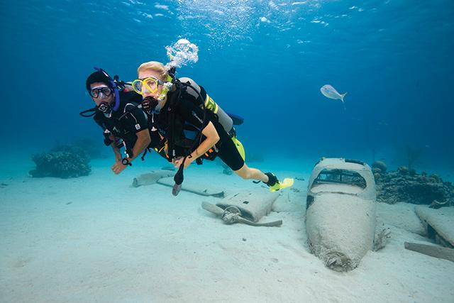 Photo of people scuba diving